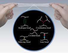 What makes elastomers tougher? Japanese researchers weigh in on chemical bonds